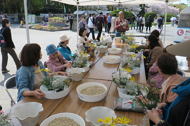 大阪城公園植木市 寄せ植え教室